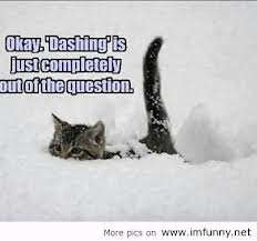 Funny snow quotes 10