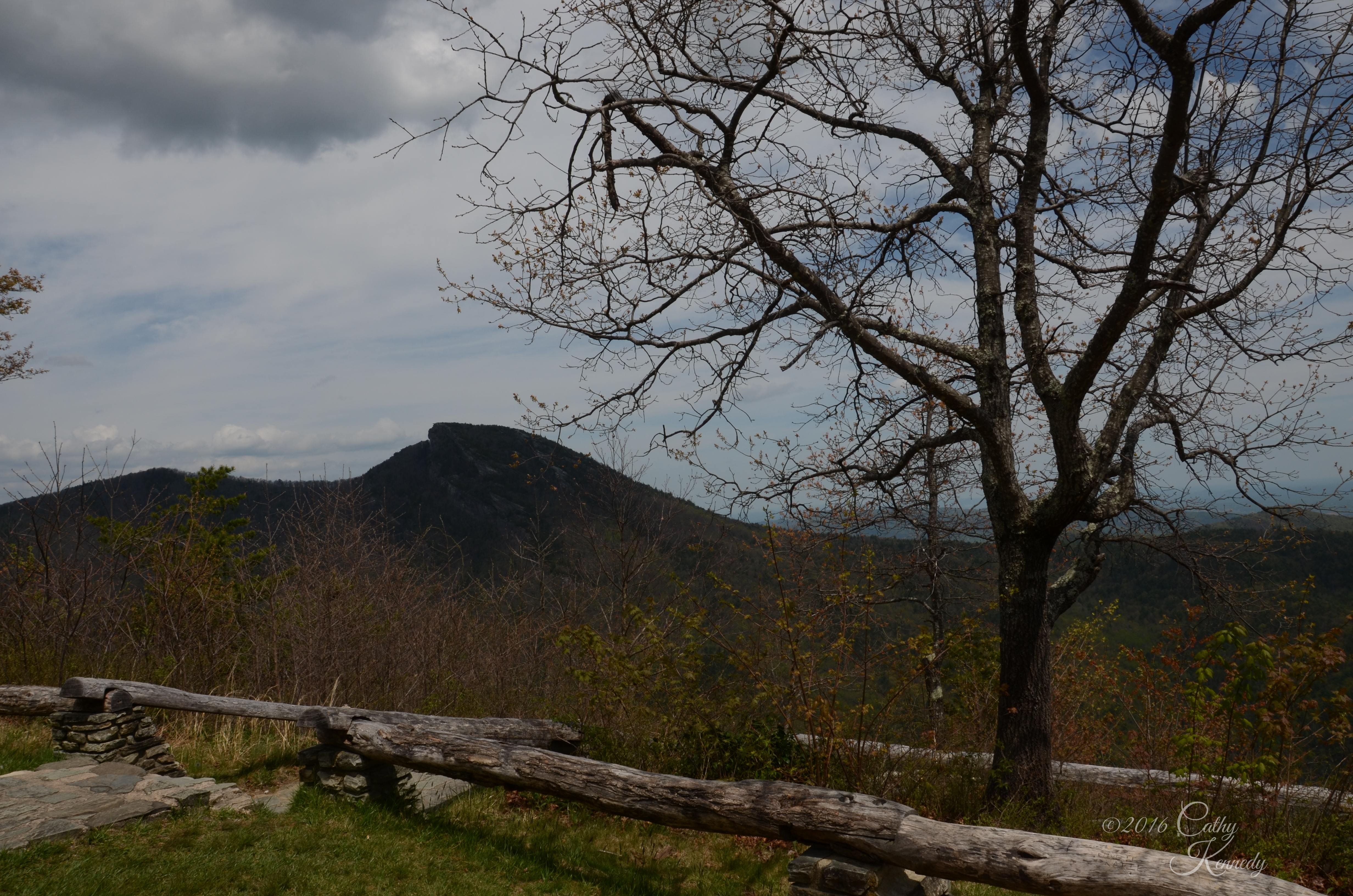 Wiseman's View Linville NC